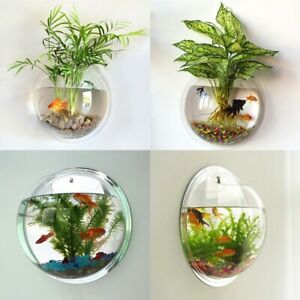 Wall Mounted Hanging Fish Bowl Aquarium Tank Beta Goldfish Plant Home Decor Gift