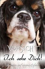 COCKER Spaniel - A4 Metall Warnschild Hundeschild SCHILD Türschild - CKS 11 T5