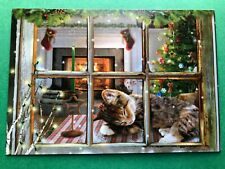 Leanin' Tree Christmas Card - Sleeping Cat At Window Theme - ID#616