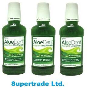 AloeDent Aloe Vera Cool Minty Freshness Mouthwash Fluoride Free - 250ml X3