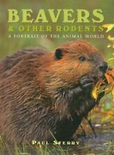Beavers and Other Rodents Portrait of Animal World Ex Library - Free Shipping