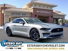2019 Ford Mustang EcoBoost Premium 2019 Ford Mustang for sale!