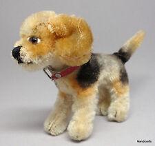 steiff biggie beagle hund mohair plüsch stehend 10cm 4in kragen 1960s ohne ausweis vtg