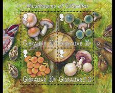 Funghi Mini Foglio di 4 MNH Francobolli 2003 Gibilterra #953a Conigli Uccelli