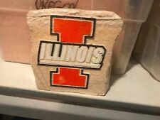 Illinois Fighting Illini Landscaping Decoration