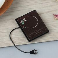 1/12 Puppenhaus Metall Induktionsherd Modell Miniaturszene KüchenspielzeugXUI