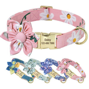 Fancy Custom Dog Collars Nylon Personalised Gold Name Tags Engraved Small Large