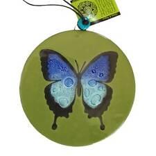 Butterfly Fused Glass Suncatcher - Large - Handmade in Ecuador - Fair Trade