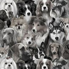 Grey Puppies / Dog Breeds Allover Cotton Elizabeth's Studio Fabric #6393