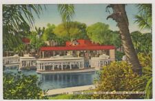 USA postcard - Silver Springs, Source of Florida's Silver River (A48)