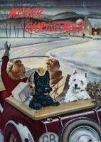 SCOTTISH TERRIER WESTIE CAR SCOTTIE DOG SINGLE DOG PRINT GREETING CHRISTMAS CARD