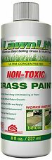 Lawn Grass Turf Paint Spray On Concentrate Non-Toxic Rejuvenate Instant Results