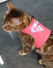 LAND O' BURNS BENGALS CAT WALKING JACKET CANDY PINK & SUPER APPLIQUE - SMALL