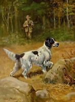 Vintage ENGLISH SETTER Print 1950s Dog Gallery Wall Art Gift for Dog Lover 2509