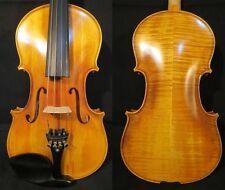 La Commissione la propria NUOVA HAND MADE violino, 4/4 -1 / 16, con le opzioni per i vostri gusti!