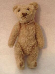Vintage steiff / Schuco teddy