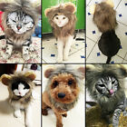 Lovely Furry Pet Hat Costume Lion Mane Wig Cat Dog Corgi DressUp With Ears Party