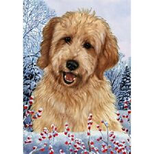 Winter House Flag - Red Goldendoodle 15270