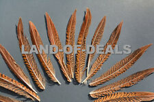 Golden Pheasant feathers Natural small loose bulk real craft wedding feather