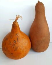 "(1) 15.5"" Birdhouse & (1) 11.5"" Martin Gourds, Dried/Cleaned Craft Ready"