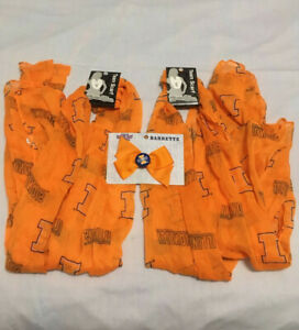 University of Illinois Lot of 2 Team Scarves & 1 Bow Barrette FREE SHIPPING