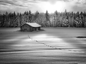 Winter Hut Snow Trees Black And White Art Decor Large Poster & Canvas Pictures