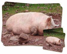 AP-5JB Sleeping Pig Print Keepsake//Jewellery Box Christmas Gift