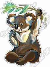 "Koala Bear Australian Wild Animal Car Bumper Window Vinyl Sticker Decal 4""X5"""