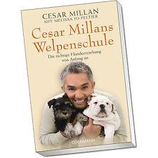 Cesar Millans Welpenschule - Die richtige Hundeerziehung von (Buch RH 22021)