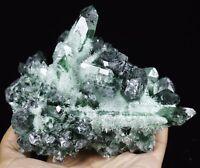 RARE ! NewNatural Beatiful Green Quartz Crystal Cluster Specimen