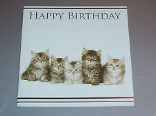 Lovely Kitten Group Birthday Card