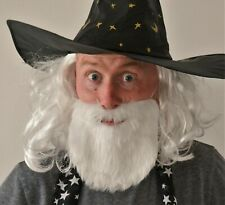Wizard Fancy Dress Accessory. White shoulder length Curled Wig and Thick Beard