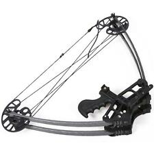 Portable 50Lbs Archery Triangle Compound Bow Hunting Right Left Hand Bow Black