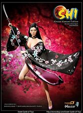 1/6 Phicen Female Figure SHI in Kireina Kimono Collector Asia Ver. PL2014-71-B-1