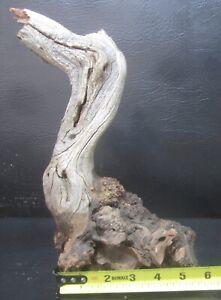 manzanita burl wood end cap  #M19  6 1/2 x 11 1/2 x 3