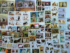 100 Different Cats Domestic and Wild on Stamps Collection