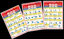 INFLATABLE BALL EXERCISES WORKOUT Instructional Wall Charts 3 Poster Set!