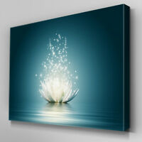 FL317 Dazzling Lotus Flower Canvas Wall Art Framed Picture Print