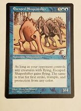 Awesome Magic the Gathering MTG Tempest Escaped Shapeshifter nm/mint English