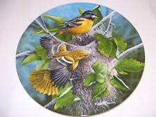 Edwin Knowles Baltimore Oriole Birds Collector Plate MIB COA Kevin Daniel 1985