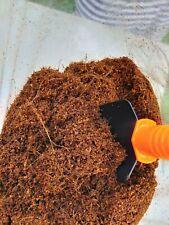 Very Clean Coco Peat   coir   Hydroponic   Coconut Fiber   Growing Media