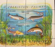 A) 2006, UZBEQUISTAN, LOCAL FISH, SALMO TUTTA ARALESIS, ACIPENSER NUDIVENTRIS, P