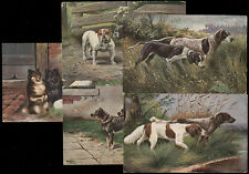 5 OLD ARTIST SIGNED POSTCARDS * HUNTING & PET DOGS MATCHED SET *ON SALE * PC5961