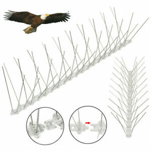 Bird Pigeon Metal Wall Fence Spikes Deterrent Anti Perch Control Repeller 1m-10m
