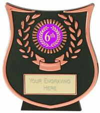 Emblems-Gifts Curve Bronze 6th Plaque Trophy With Free Engraving