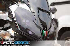 Aprilia RSV1000 Tuono Fighter 06 07 08 Fairing Number Board 3D Gel Protector