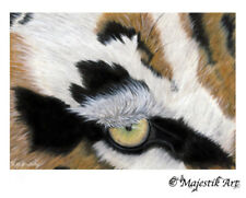 "Tiger Wildlife ACEO Print ""Hunter"" By V Kenworthy"