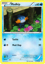 1x Mudkip - 33/160 - Sheen Holo Collector Chest Exclusive NM-Mint Pokemon XY - P