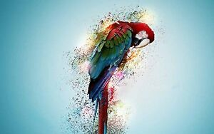 Home Art Decor Psychedelic Macaw Parrot Oil Painting Picture Printed on Canvas