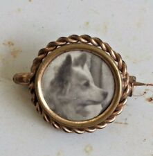 Antique Dog Photo Pin Brooch. Early Photograph. Victorian Mourning Dog Lover